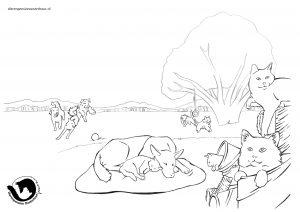 dpo dierenpension oosterhout kleurplaat speelen hond kat spelen buiten