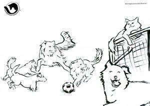 dpo dierenpension oosterhout kleurplaat voetbal hond kat