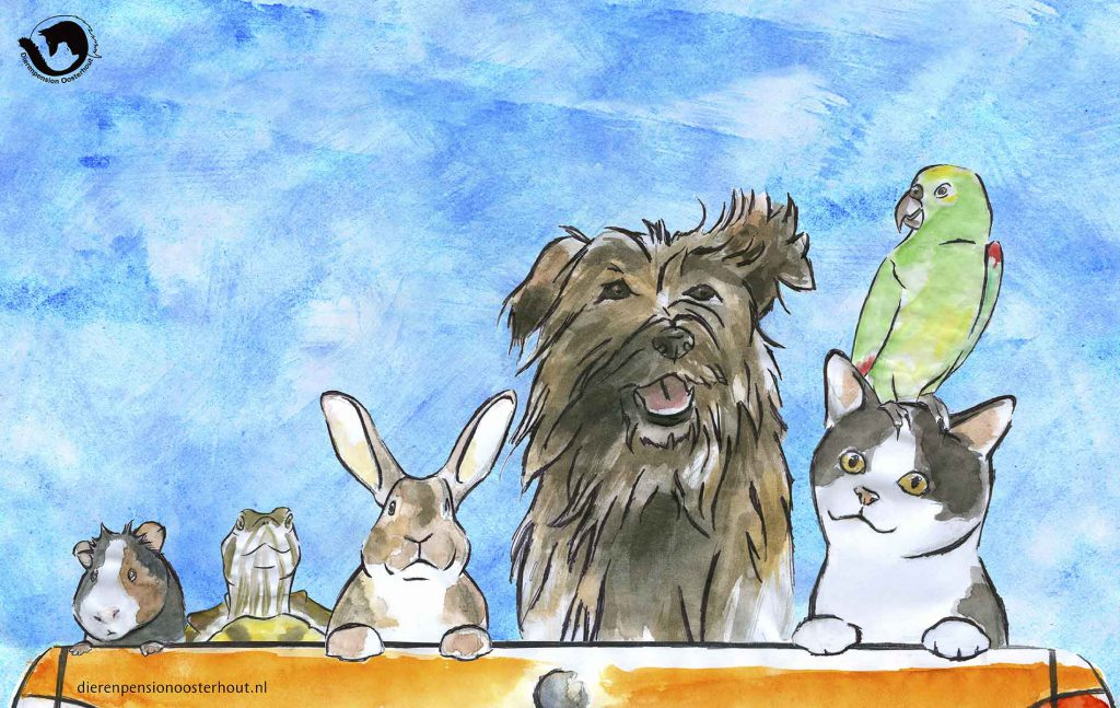 dpo dierenpension oosterhout wallpaper totziens hond kat vogel konijn schilpad cavia
