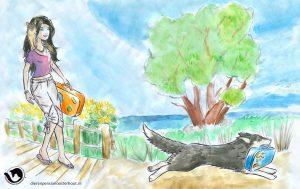 dpo dierenpension oosterhout wallpaper zomer hond rennen kat vrouw